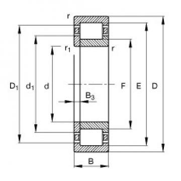 65 mm x 120 mm x 23 mm  FAG NUP213-E-TVP2 cylindrical roller bearings