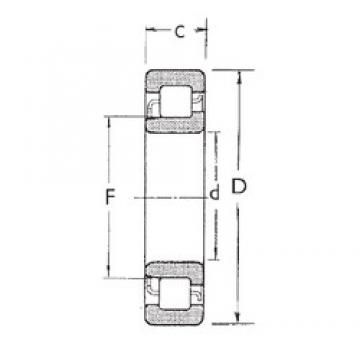 25 mm x 62 mm x 17 mm  FBJ NJ305 cylindrical roller bearings